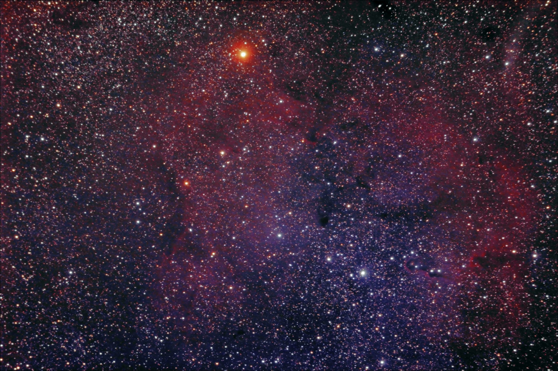 The Garnet Star and Elephant's Trunk Nebula